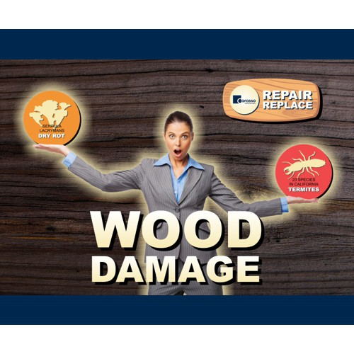 Wood Damage Repair Replace