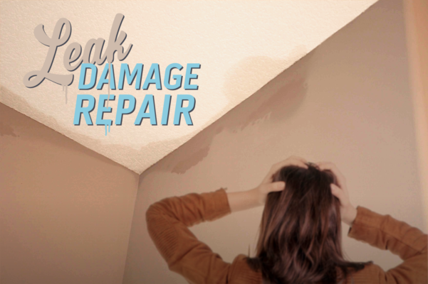 Leak Damage Repair
