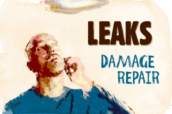 Leaks Damage Repair